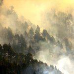 EL CAMBIO CLIMATICO, CAUSAS Y SITUACION ACTUAL